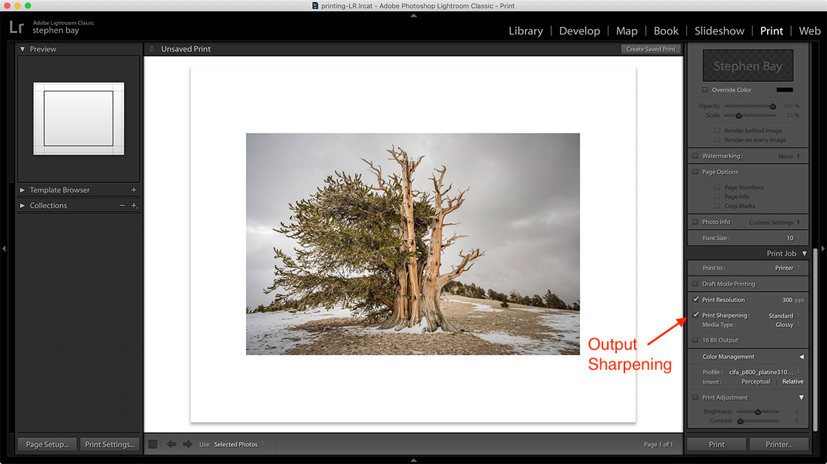Output Sharpening in Lightroom's Print Module
