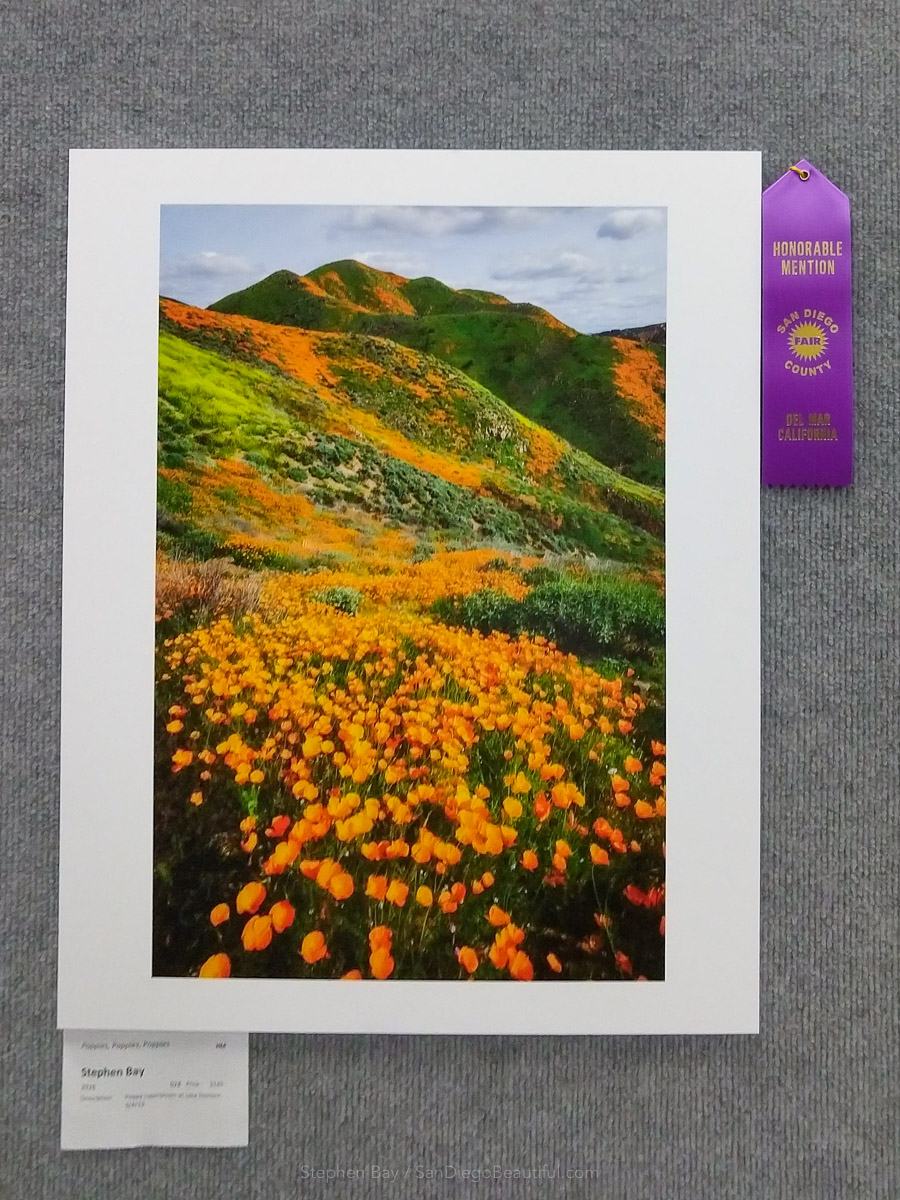 Honorable mention in the fair annual theme