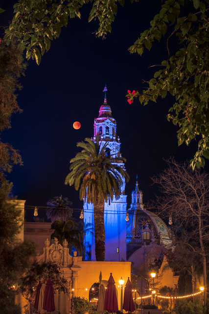 Under a Blood Moon - Balboa Park, San Diego