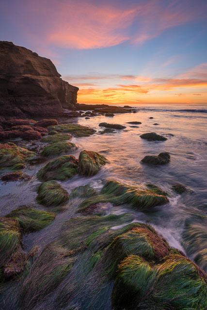 The Natural Coast